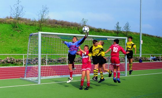 Jugend-Fußballtornetze zweifarbig • Schutznetze Planen online bestellen